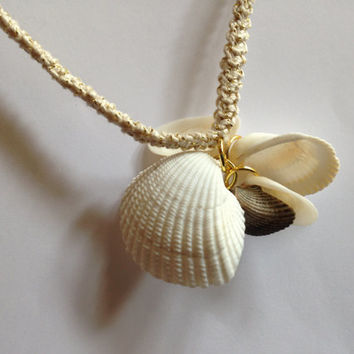Unique Necklace real shells pendant clams tellins - Crochet necklace gold - Natural sea shells charm - Summer beach necklace - Beach wedding