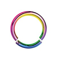BodyJ4You 14G Rainbow Anodized Segment Ring