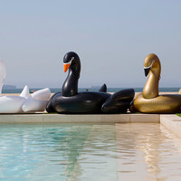 Giant Swan Float Swan Squad - 3 Pack by FUNBOY