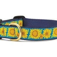 Up Country Bright Sunflower Dog Collar