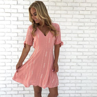 Perfectly Pink Embroider Skater Dress