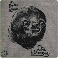 Live Slow Die Whenever | 6DollarShirts