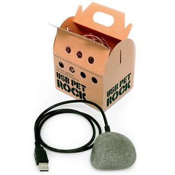 USB Pet Rock at Firebox.com