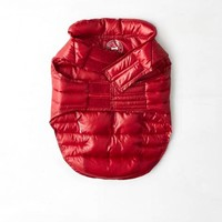 American Beagle Outfitters Pupper Jacket, Red | American Eagle Outfitters