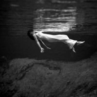 Weeki Wachee Spring, Florida Poster by Toni Frissell at AllPosters.com