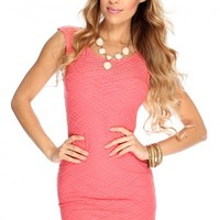 Coral Sleeveless Texture Sexy Party Dress