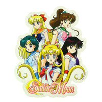 SAILOR MOON SOLDIER GROUP STICKER
