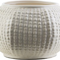 Clearwater Coastal Table Vase Ivory, Light Gray