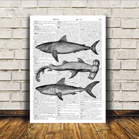Nautical art Sharks poster Beach house decor Marine print RTA38