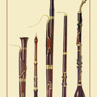 Dolciano, Oboe da Caccia, Oboe, Basset Horn and Bassoon 20x30 poster