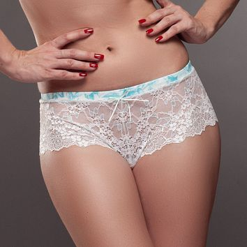 Lavinia Mystic Winter Light Sheer Lace Hipster Panty