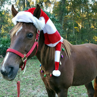 Elf Hat for Horse or Pony -- Equine Christmas Elf Hat - Fun Holiday Horse Hat Costume