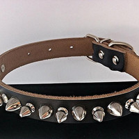 Studded Spiked Genuine Leather Dog Collar with Rhinestone Detail - Medium Seafoam Blue