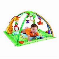 Fisher Price Melodies & Lights Deluxe Gym 20% OFF
