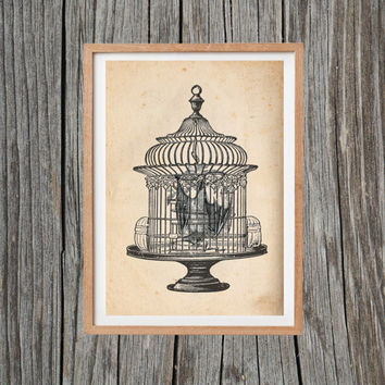 Vintage Bat Print Bird Cage Poster Print Antique Wall Art
