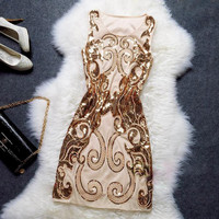 Fashion Embroidered Sleeveless Tight Dress