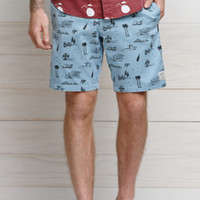 Iron and Resin Days Of Our Lives Boardshorts at PacSun.com