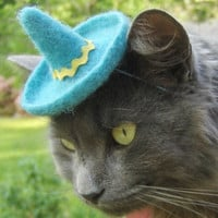 Cat Sombrero  Dog Sombrero  Hand Felted Wool by ToScarboroughFair