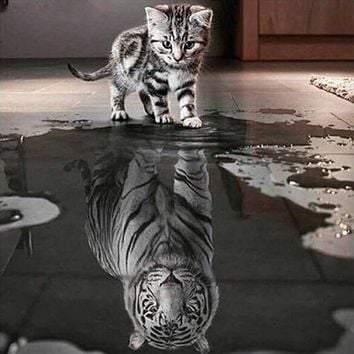 Cat and Tiger Wall Canvas