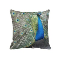 Peacock Square Pillow from Zazzle.com