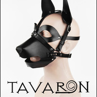 Leather Mask Head Harness Dog Puppy with Muzzle