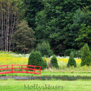 Country Style Landscape Photography with Little Red Bridge