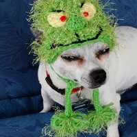 Grinch Christmas Dog Beanie Hat
