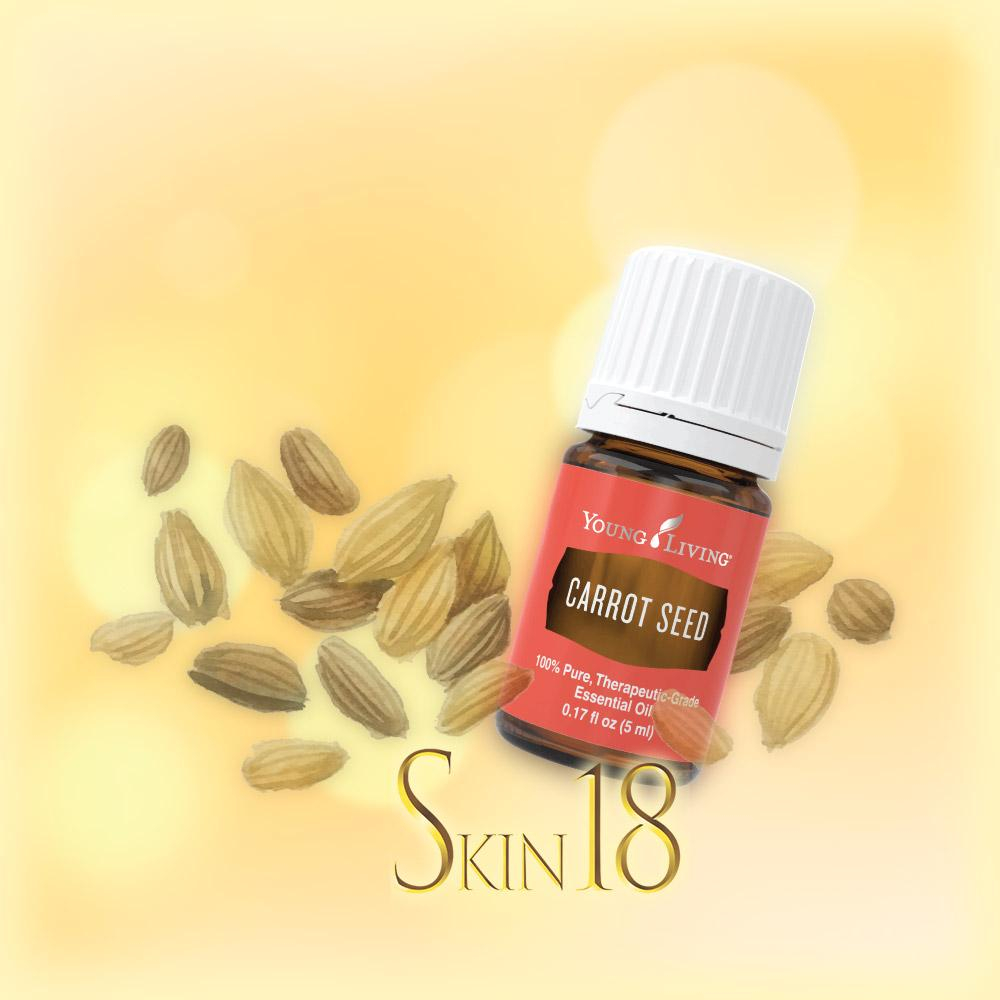 Image of Carrot Seed Essential Oil Single