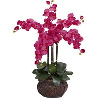 Phalaenopsis with Decorative Vase Silk Flower Arrangement, Beauty - Walmart.com