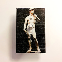 Switchplate Statue of David Switch Plate , Gray Background