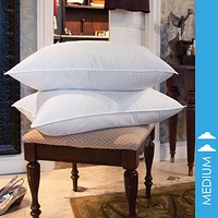 10/90 GOOSE FEATHER PILLOW TWIN PACK
