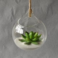 Hanging Glass Vase Hanging Terrarium Glass Vase Hydroponic Planter Ball Indoor Office Home Ornament Vase for Wedding Decoration