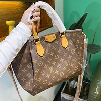 Louis Vuitton LV new dumpling bag handbag simple one-shoulder messenger bag