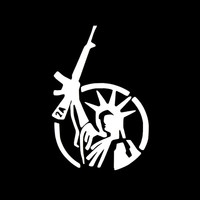 Funny STATUE OF LIBERTY Right to Bear Arms AK 47 2nd Amendment Laptop Vinyl sticker Decal For Car Truck Window Bumper