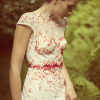 Beautifull lace dress with embroidery
