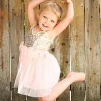 Baby Girl Pink and Gold Sequin Princess Dress
