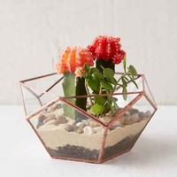 ABJ Glassworks Calix Large Planter