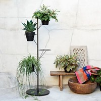 Prism Plant Stand