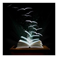 Welcome to the magical world of reading!
