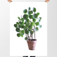 DIY Print Chinese Money Plant Art, INSTANT DOWNLOAD, House Plant Art, Pot Plant Image, Printable Wall Art, Botanical Wall Art, Houseplant