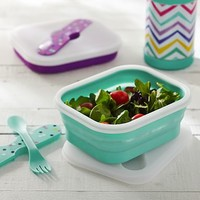 Collapsible Lunch Containers With Utensils