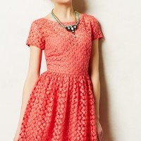 Stitched Blossom Dress by Nicole Miller Pink
