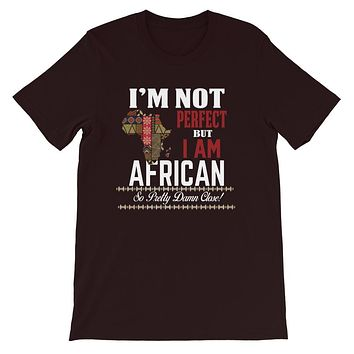 I am Not Perfect But I Am African T-Shirt