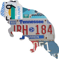 Tennessee License Plate Raccoon