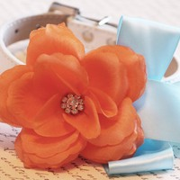 Orange Light Blue wedding dog collar with Orange flower, Wedding dog accessory