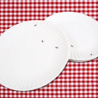IT'S NOT PAPER! PLATE SET