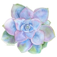 Blue Succulent Watercolor