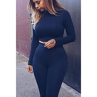 High Neck Long Sleevs Crop Top with Skinny Pants Two Pieces Set