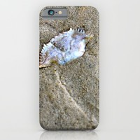 Lost Crab iPhone & iPod Case by Emilytphoto