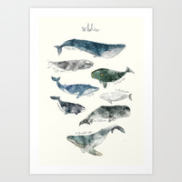 Whales Art Print Promoters